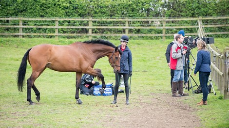 Film crew with BHS Stage 2 Foundation Groom with horse