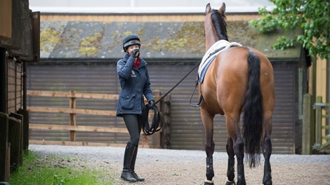 BHS Stage 2 Foundation Groom walking with horse next to stables